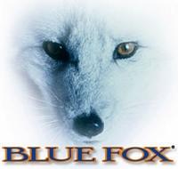 Rapala Blue Fox Slyflex Minnow Gummifische verschiedene Größen und Farben